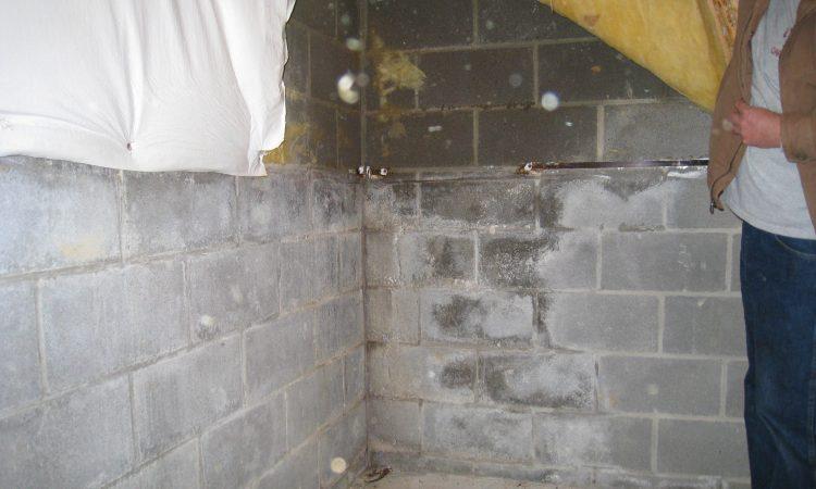 damp basement in holland mi a damp basement is an